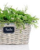 Basket with herbs royalty free stock photo