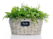 Basket with herbs Stock Image