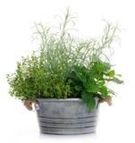 Basket with herbs stock photos