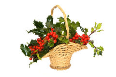 A basket of a Holly Tree branches Stock Image