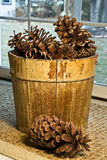 Basket and Huge Pinecones Stock Photos