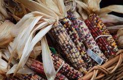 Basket of Indian Kernals Stock Images