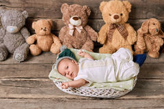 Basket, infant and teddybears. Royalty Free Stock Photo