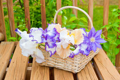 Basket with irises garden flowers Royalty Free Stock Images