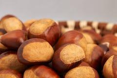 Basket of large chestnuts Stock Image