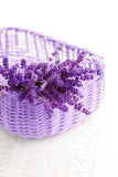 Basket of lavende Royalty Free Stock Photography