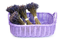 Basket with lavender Stock Image