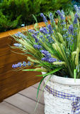 Basket of lavender. On wooden deck Royalty Free Stock Images