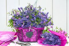 Basket of lavender clematis Royalty Free Stock Photography