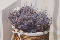 Basket with lavender flowers Stock Images