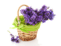 Basket Lavender twigs Royalty Free Stock Image