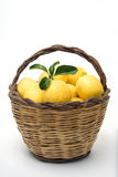Basket of lemons Royalty Free Stock Images