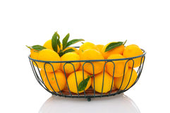 Basket of Lemons Royalty Free Stock Photos