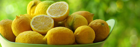 Basket with  lemons. Royalty Free Stock Photography