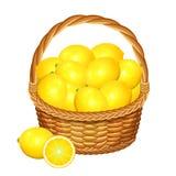 Basket with lemons fruits. Vector illustration. Basket with lemons fruits. Vector illustration Stock Image