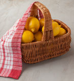 Basket with lemons Stock Images