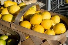 Lemon Basket. Basket of lemons at a roadside fruit stand Stock Photos
