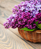 Basket with lilac flowers Stock Photo