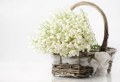 Basket with lilies of the valley Royalty Free Stock Image