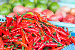 Basket of long red chillies Stock Photography