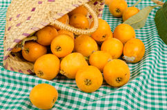 Basket with loquat still life Royalty Free Stock Photos