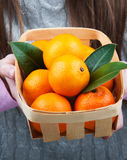 Basket with mandarins Stock Photos