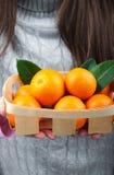 Basket with mandarins Royalty Free Stock Photo