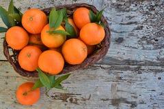 Basket of mandarins Stock Photos
