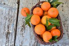 Basket of mandarins Royalty Free Stock Photos