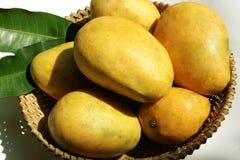 Basket of mangos Royalty Free Stock Photo