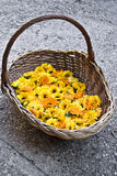Basket with Marigold flowers Stock Image