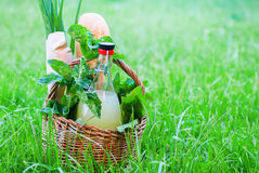 Basket Mint Drink Fresh Bread Leaves Greens Summer Royalty Free Stock Photo