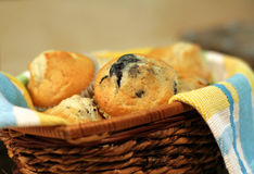 Basket Of Muffins Royalty Free Stock Photos