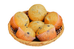 Basket of muffins Stock Photography