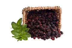 A basket of Mulberries and green mint leaf. A basket of Mulberries and green leaf isolated on a white background Stock Photo