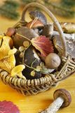 Basket with mushrooms Royalty Free Stock Photography