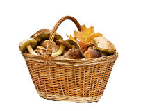 Basket with mushrooms Royalty Free Stock Image