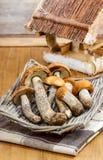 Basket of mushrooms Stock Image