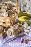 Basket with mushrooms and ingredients for cooking Stock Photography