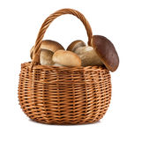 Basket with mushrooms. Isolated on white background Royalty Free Stock Photos
