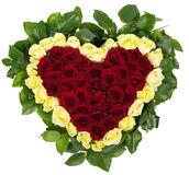 Basket of natural roses in the shape of heart Stock Images
