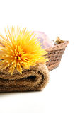 Basket with natural spa elements Stock Photography