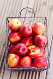 Basket of nectarines Stock Photos