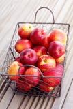 Basket of nectarines Royalty Free Stock Photo