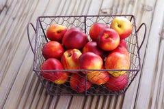 Basket of nectarines Royalty Free Stock Image