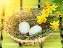 Basket with eggs. Basket with nest, white eggs and flowers royalty free stock images