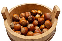 Basket with a nut a filbert Stock Images