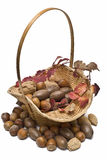 Basket with nuts. Royalty Free Stock Photography