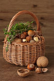Basket of nuts. Assortment of nuts in a wicker basket and bunch of thyme Royalty Free Stock Photos