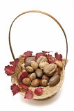 A basket of nuts and an ivy branch. Stock Photography